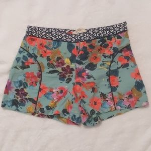 High Waisted Anthropologie Shorts